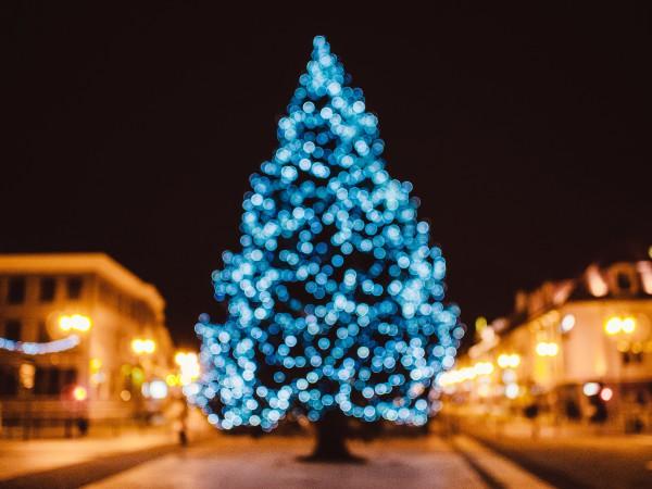 02-Weihnachtsbaum-Stadt-Mittelpunkt