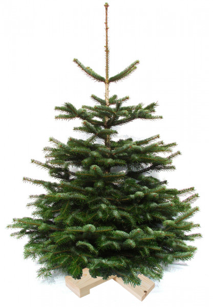Weihnachtsbaum auf Holzkreuz 1m