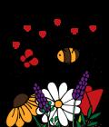Aktion Blumenwiese