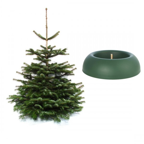 Weihnachtsbaum inkl. Baumständer