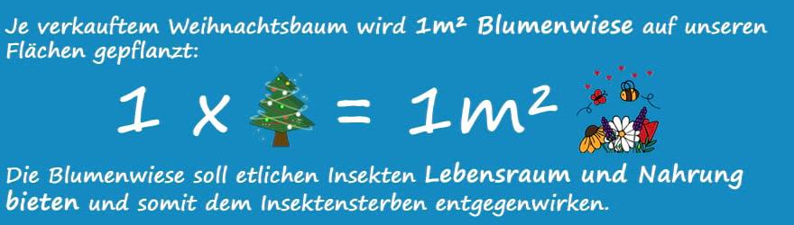 gruende_fuer_weihnachtsbaum